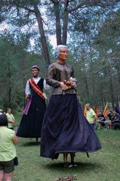 Les millors fotos de la setmana de Nació Digital Aplec del Pi de les Tres Branques. </br> Foto: Pere Gendrau
