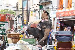 Les millors fotos de la setmana de Nació Digital   Un rodatge de  la productora Widescope transforma el centre de Terrassa en una ciutat de l'Índia.  </br> Foto: Cristóbal Castro
