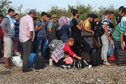 El drama dels refugiats sirians, a la frontera de Macedònia Cua de refugiats sirians, afganesos i iraquians a la frontera Els policies macedonis deixen passar la frontera de deu en deu. (24 d'agost). Foto: Sergi Cámara