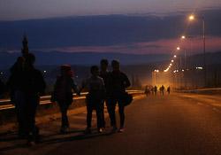 El drama dels refugiats sirians, a la frontera de Macedònia Grups de sirians caminen per arribar a la frontera aquesta matinada (25 d'agost). Foto: Sergi Cámara
