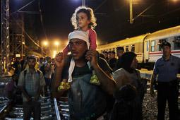 Refugiats sirians a la frontera Sèrbia-Croàcia Un sirià desesperat perqueè no ha cabut al tren i haurà de passar la nit al ras esperant el de l'endemà. Foto: Sergi Cámara