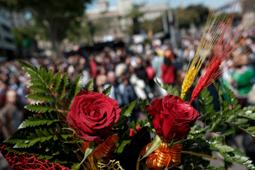Sant Jordi 2017 Barcelona. Foto: Adrià Costa