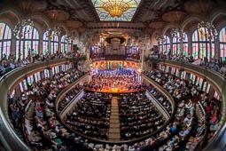 Les millors fotos de la setmana de Nació Digital L'OSV interpreta la Novena de Beethoven al Palau de la Música. Foto: Juanma Peláez
