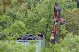 Les millors fotos de la setmana de Nació Digital Veïns de Sant Pere de Torelló han recollit gairebé 2.000 pneumàtics abocats il·legalment en una zona boscosa de la localitat. Foto: Josep M. Montaner