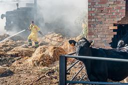 Les millors fotos de la setmana de Nació Digital Una cigarreta, la causa més probable de l'incendi de Sant Feliu Sasserra. Foto: Josep M. Montaner