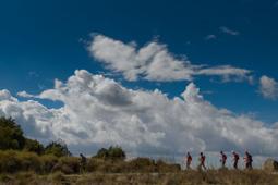 Les millors fotos de la setmana de Nació Digital 2.930 marxadors prenen la sortida de la 37ª Matagalls-Montserrat. </br> Foto: Josep M. Montaner