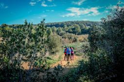Les millors fotos de la setmana de Nació Digital  Cursa d'Orientació per la Marató de TV3 a Sant Cugat del Vallès. Foto: Josep M. Montaner