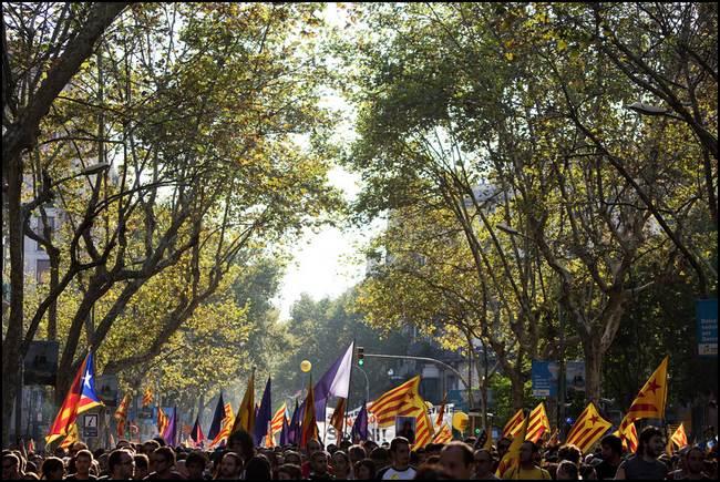 Diada Nacional: manifestació de l'esquerra independentista