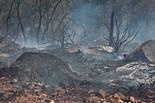 L'Incendi de l'Alt Empordà a la zona sud del pantà de Boadella, 2012