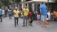 Via Catalana - Fotos dels lectors Girona