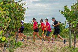 Trail Senders del Penedès-Les Cabanyes 2014