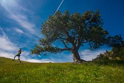 El 2014 a Nació Muntanya, en imatges Ultra Valls d'Àneu (Pallars Sobirà). Foto: Josep Maria Montaner