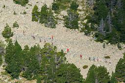 El 2014 a Nació Muntanya, en imatges La Marrana Skyrace (Ripollès). Foto: Josep Maria Montaner