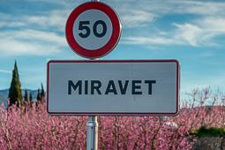 La Cameta Coixa a Miravet