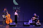 Premis Drac 2016