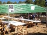 Fira de la Torregassa a Olius 2013