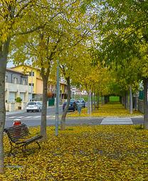 La tardor, vista pels lectors d'Osona.com Roda de Ter. Foto: M. Àngels Roviró