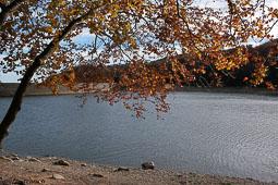 La tardor, vista pels lectors d'Osona.com Santa Fe del Montseny. Foto: Glòria Franch