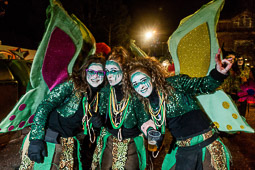 Carnaval de Terra Endins 2015: Rua 2