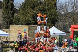 Festa de l'Arbre i Fira de la Natura de Muntanyola