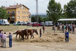 Festa del Batre de Santa Eugènia de Berga, 2015