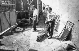 Estimats bombers (1978-94) Joan Sarreta i Antonio Molina en un accident d'un camió de porcs. Foto: Arxiu La Marxa