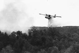 Estimats bombers (1978-94) Incendi forestal a l'Esquirol. Foto: Arxiu La Marxa
