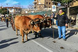 Passant dels Tonis a Taradell, 2016