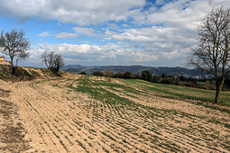 Osona: paisatge i meteorologia (febrer 2016)