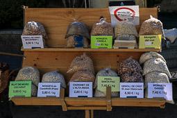 Mercat i Tastets de la Terra a l'Esquirol, 2016