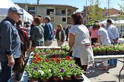 Fira de la Primavera a Sant Pere de Torelló
