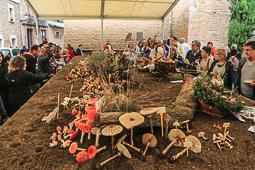 Festa del Bolet de Seva 2016