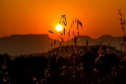 Osona: paisatge i meteorologia (juny 2017)