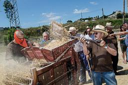 Festa del Batre de Santa Eugènia de Berga, 2014