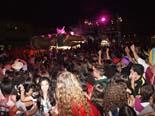 Festa del Serpent de Manlleu 2011