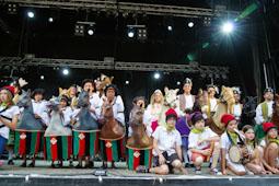 Festa Major de Vic 2014: la Xurriacada (2)