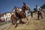 Festa del Segar a Santa Eulàlia de Riuprimer