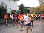 Cursa de Sant Galderic - Tavernoles 2011