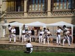 Festa Major de Folgueroles 2013