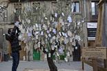 Mercat Medieval de Vic 2011: Olivera de la Pau
