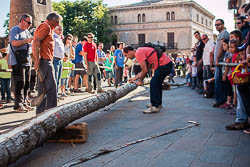 Festa Verdaguer de Folgueroles: Arbre de Maig