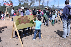 Festa de la Primavera 2015 a la masia de Can Deu de Sabadell Un nen juga amb un joc d'enginy.