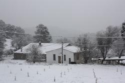 Una nevada històrica Casa al bell mig de Collserola. Norma Vidal.