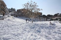 Una nevada històrica Un parc sota la neu a Vacarisses. Norma Vidal.