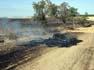Catalunya sota l'amenaça dels incendis forestals Un incendi va cremar vegetació agrícola a Balaguer a mitjans de juny, a la demarcació de Lleida.