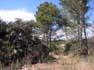 Catalunya sota l'amenaça dels incendis forestals Imatges de la Serra de Llaberia, als termes municipals de Marçà i Torre de Fontaubella, a la demarcació de Tarragona.