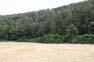 Catalunya sota l'amenaça dels incendis forestals Boscos del sud del Bages, dins el terme municipal de Sant Mateu de Bages, a la Catalunya Central.