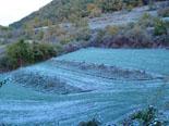 Paisatge i meteorologia de novembre al Ripollès Enfarinada anecdòtica a Ripoll (22 de novembre). Foto: Antonina Coromina