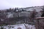 Paisatge i meteorologia de novembre al Ripollès Enfarinada matinal a Molló (30 de novembre). Foto: Pep Coma