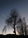 Paisatge i meteorologia de desembre al Ripollès Vista des de can Fossses, a Planoles (8 de desembre). Foto: Jordi Campos